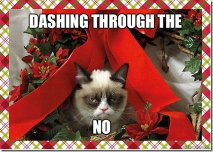 Grumpycat_dashing_through_the_NO